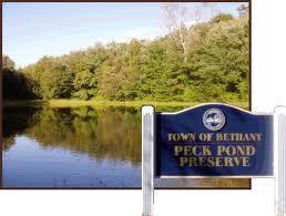 Bethany peck pond