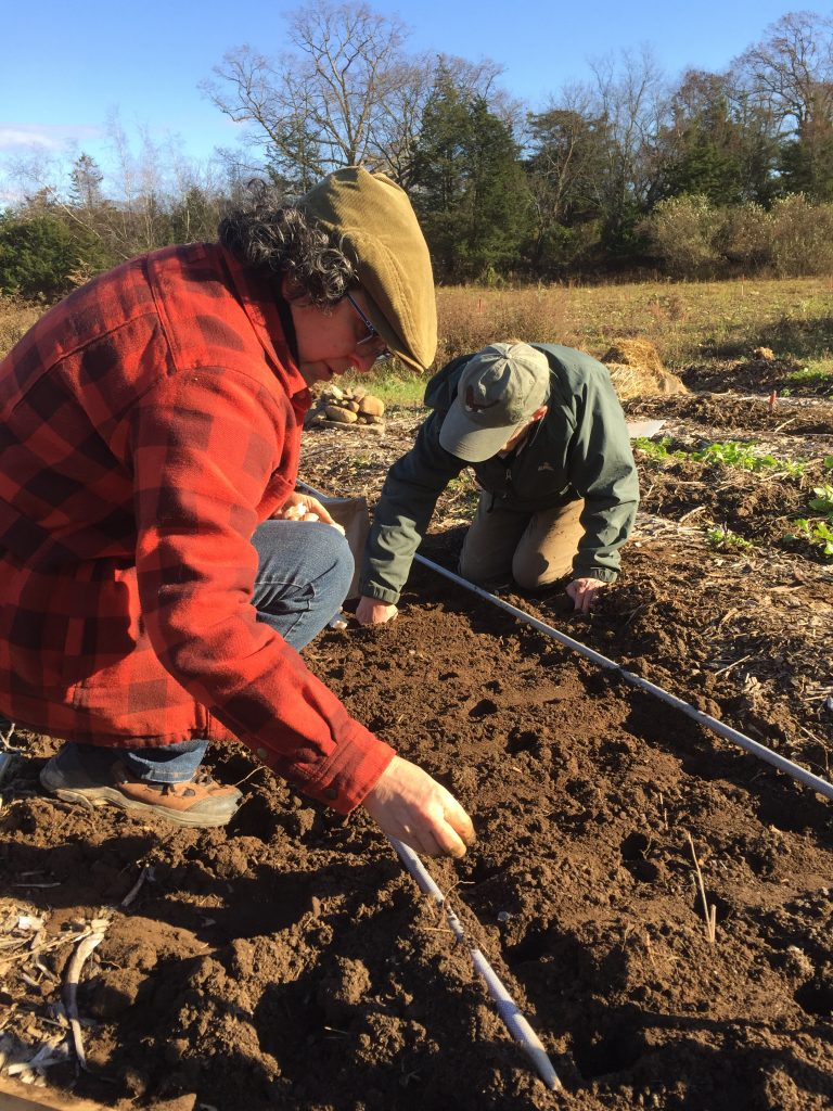 Rocky Corner Organic Farm